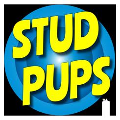 Stud Pups™