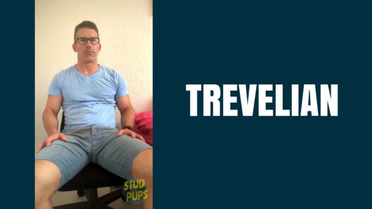 Trevelian